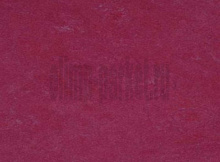 Виниловый пол Marmoleum Click 300x300 mm  Raspberry 753879